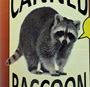 cannedraccoon Crazed Raccoon Attacks Maine Woman, Fight To Death Ensues